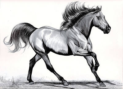 Horses Drawing - Simplicity Of Loping by Cheryl Poland