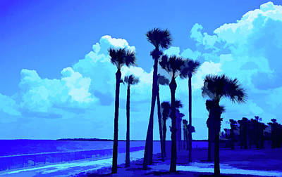 Photograph - Simply Blue Palms Blowing by Aimee L Maher Photography and Art Visit ALMGallerydotcom