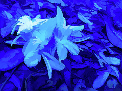 Photograph - Simply Blue Pastel Petals by Aimee L Maher Photography and Art Visit ALMGallerydotcom