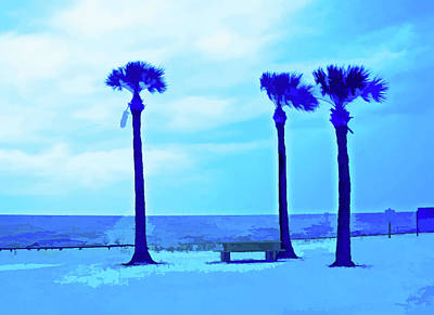 Photograph - Simply Blue Pine Island by Aimee L Maher ALM GALLERY