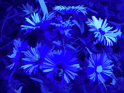 Photograph - Simply Blue Pollinating by Aimee L Maher Photography and Art Visit ALMGallerydotcom