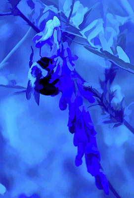 Photograph - Simply Blue Pollination by Aimee L Maher ALM GALLERY