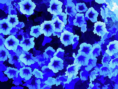 Photograph - Simply Blue Purple Petunias by Aimee L Maher ALM GALLERY