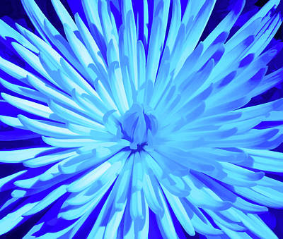 Photograph - Simply Blue Starburst by Aimee L Maher ALM GALLERY