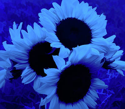 Photograph - Simply Blue Sunflower Bouquet by Aimee L Maher Photography and Art Visit ALMGallerydotcom