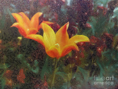 Photograph - Simply Floral by Leigh Kemp