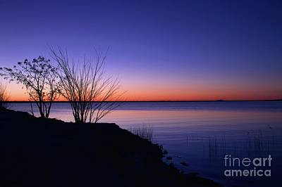 Photograph - Simply Gentle Blue by Diana Mary Sharpton