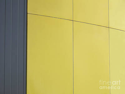 Photograph - Simply Gray And Yellow by Ann Horn
