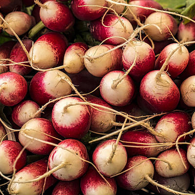 Little Italy Photograph - Simply Radishing by Peter Tellone