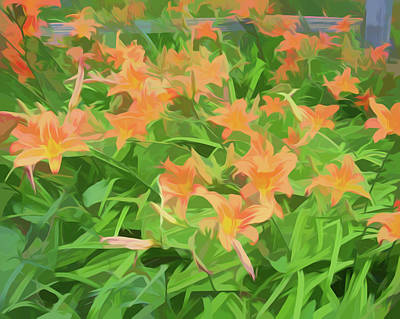 Photograph - Simply Soft Field Of Toger Lilies by Aimee L Maher Photography and Art Visit ALMGallerydotcom