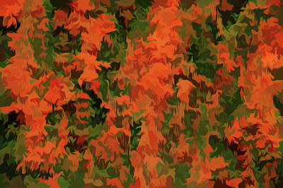 Photograph - Simply Soft Orange Parade by Aimee L Maher Photography and Art Visit ALMGallerydotcom