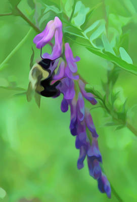 Photograph - Simply Soft Pollination by Aimee L Maher Photography and Art Visit ALMGallerydotcom