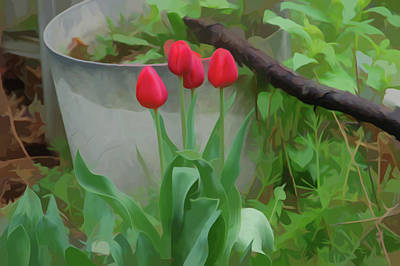 Photograph - Simply Soft Red Tulips by Aimee L Maher Photography and Art Visit ALMGallerydotcom