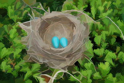 Photograph - Simply Soft Robins Nest by Aimee L Maher Photography and Art Visit ALMGallerydotcom