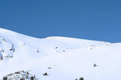 Photograph - Simply Winter by Juli Scalzi