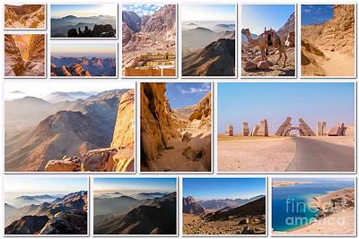 Sinai Peninsula Landmark Collage Art Print by Benny Marty