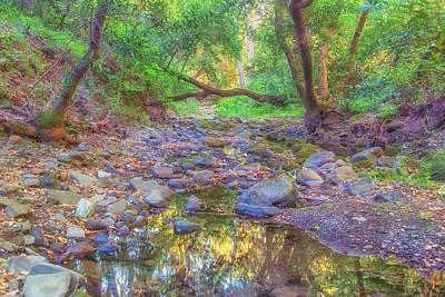 Photograph - Sinbad Creek At Pleasanton Ridge by Marc Crumpler