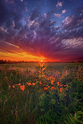 Photograph - Since The Dawn Of Time by Phil Koch