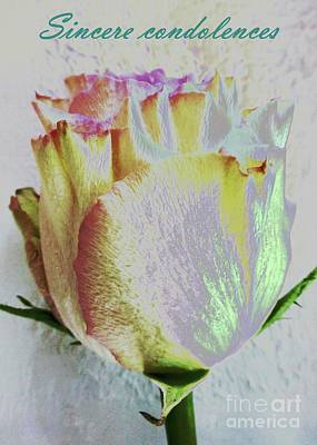 Photograph - Sincere Condolences Rose Card by Barbie Corbett-Newmin