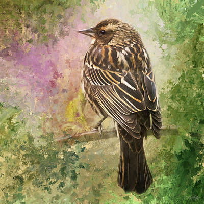 Painting - Sing Your Song - Bird Art by Jordan Blackstone