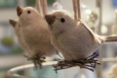 Tweets Digital Art - Singing In The Shop by Terry Davis