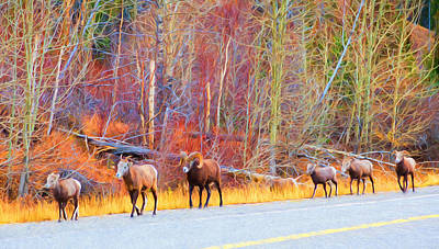 Photograph - Single File For Safety by Judy Wright Lott