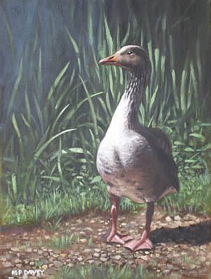 Painting - Single Goose by Martin Davey