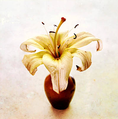 Photograph - Single Lily Still Life by Louise Kumpf