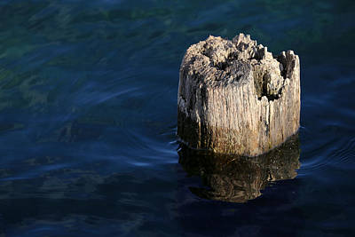 Photograph - Single Old Piling 2 by Mary Bedy