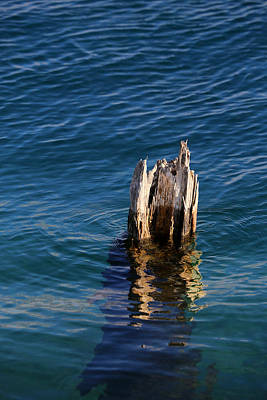 Photograph - Single Old Piling 3 Vertical by Mary Bedy