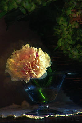 Photograph - Single Peony by John Rivera