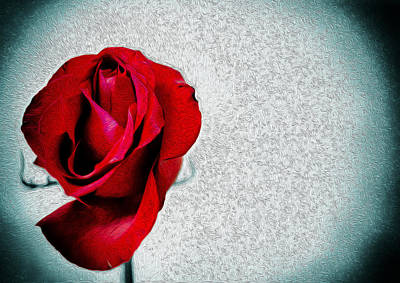 Photograph - Single Red Rose Oil Painting Photograph Fusion by John Williams