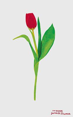 Single Red Tulip Art Print by James M Thomas