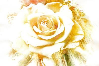 Photograph - Single Rose by Athala Carole Bruckner