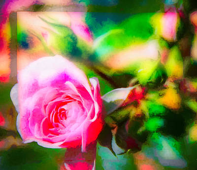 Photograph - Single Rose11 by Susan Crossman Buscho