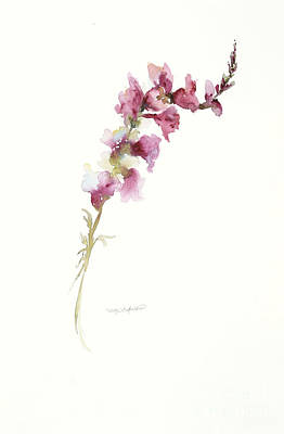 Print featuring the painting Single Stem Snapdragon by Sandra Strohschein