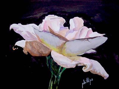 Single White Rose Art Print by Jim Phillips