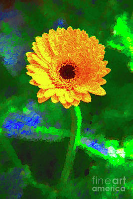 Photograph - Single Yellow Flower by Rick Bragan