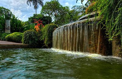 Photograph - Singpore Botanic Gardens by Nisah Cheatham