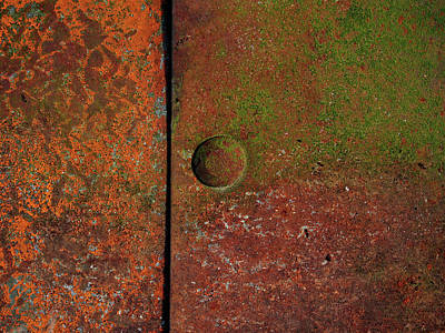 Photograph - Singular ...raw Steel by Tom Druin