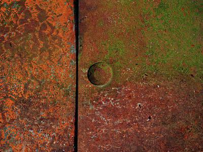 Photograph - Singular ...raw Steel by Tom Druin