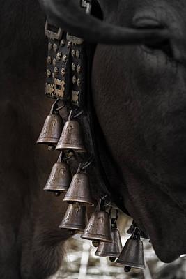 Photograph - Cowbells Song by Edgar Laureano