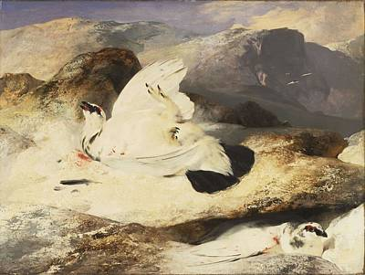 Design Pics - Sir Edwin Landseer, English - Ptarmigan in a Landscape by Artistic Panda