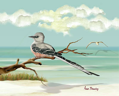 Painting - Sissor Tailed Flycatcher by Anne Beverley-Stamps