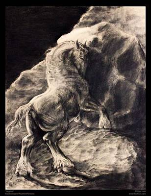 Clydesdale Drawing - Sisyphus by Risa Kent