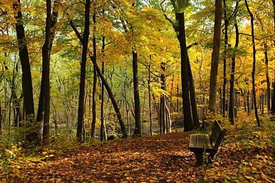 Autumn Photograph - Sit A Spell In Autumn by Rosanne Jordan