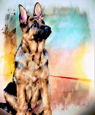 Painting - Sit Stay German Shepherd Art by Barbara Chichester