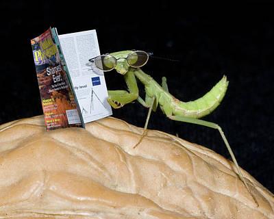 Digital Art - Sittin On A Nut And Readin by Eleanor Caputo