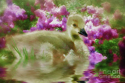 Gosling Painting - Sitting Among The Lilacs by Elaine Manley