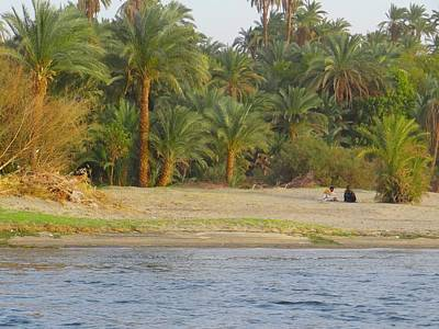 Education By Traveling Photograph - Sitting By The Date Palms By The Nile by Exploramum Exploramum
